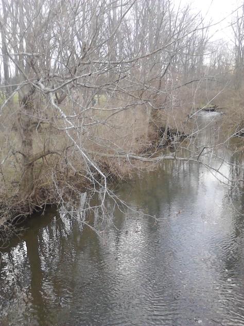 A winding creek through a Jessamine County farm