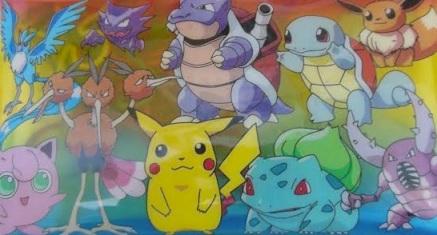 pokemon-pouch