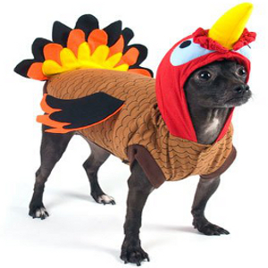 Dog-Thanksgiving-Costume-Turkey